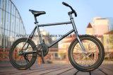 20 인치 소형 조정 기어 자전거, 해안 브레이크 자전거 (YK-FG-011)