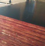 박달나무 또는 포플라 코어 건축 합판 필름은 직면했다 콘크리트 (HBP002)를 위한 합판을