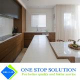 Folheado e gabinete de cozinha elevado cinzento da mobília do armário do revestimento da laca do lustro