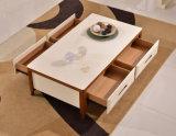 Armário de madeira contínuo da sala de visitas (M-X2190)