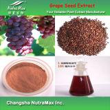 OPC de l'extrait 95% de graine de raisin