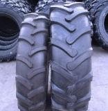 Trator Harvest Tyre para México Market
