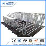 Клети беременность оборудования конструкции фермы свиньи Henan Hengyin для сбывания