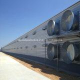 Stahlaufbau-Fertigung-Licht-Stahlkonstruktion-Huhn-Häuser