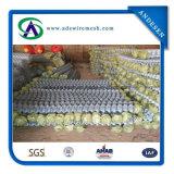 Загородка звена цепи PVC оптовой продажи легк собранная Coated
