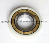 Alta qualidade isolada carregando os rolamentos 6317/C3vl0241 de Insocoat