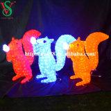 Lumière acrylique d'écureuil de DEL