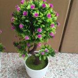 Piante e fiori artificiali di piccoli bonsai Gu-Zqpsbm6V30ISO