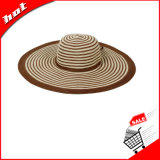 밀짚 모자, 느슨한 모자, 큰 테두리 모자, 여자 모자