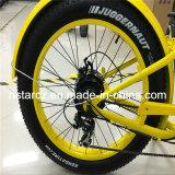 Vente chaude de gros vélo électrique femelle de pneu (RSEB-506)