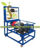 Carrinho do ensino da transmissão automática que projeta o equipamento de treinamento técnico educacional do equipamento