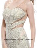 Alineada larga sin mangas elegante del baile de fin de curso del V-Cuello de las mujeres atractivas de la parte posterior