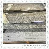 中国の白および灰色の花こう岩の虚栄心の上
