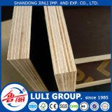 Boa madeira compensada Shuttering da qualidade 12mm/15mm/17mm/18mm para construir da fábrica