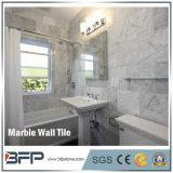 A parede interior da alta qualidade projeta a telha de mármore de pedra natural de Carrara