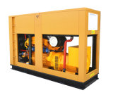 60Hz 1800rpm Googol Natural Gas Generator Set 200kw 250kVA