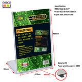 Stand en plastique vertical de carte de la taille A4 avec personnaliser l'impression de papier
