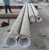 10m ed acciaio d'acciaio Palo dell'alberino di 12m