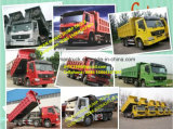 Vrachtwagen van de Kipwagen van Sinotruk HOWO 6X4 de Op zwaar werk berekende