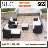 Sofa de rotin de sofa de jardin/sofa extérieur (SC-B7016)