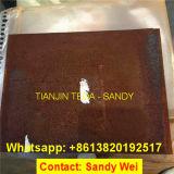 Placa de aço de Corten da resistência quente da qualidade da prima da venda para o recipiente do indicador da porta da fachada