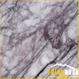 Green/White/Black/Grey Natural Marble para Stone Floor Wall Tiles y Slab
