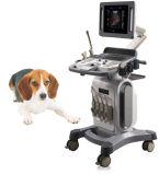 Explorador veterinario del ultrasonido de Doppler del color de la carretilla