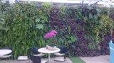 고품질 인공적인 플랜트 및 꽃 녹색 벽 구 Wall05182705