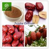 Китайская первоначально выдержка выдержки Jujube/Jujube Fructus