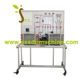 Equipo de laboratorio educativo del aparato del experimento del banco de trabajo del entrenamiento del equipo del amaestrador del refrigerador