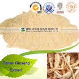Extrato da folha do Ginseng de Panax dos fabricantes