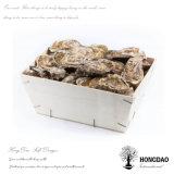 주문 로고 Wholesale_D를 가진 Hongdao 고품질 굴 나무로 되는 포장 상자