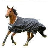 انتقيت ثقيلة خفيفة مسيكة شقّ موقف حصان حجر السّامة جمع دثر ([سمر1704])