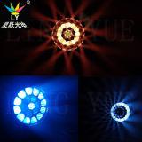 광속 B 눈 단계 점화 19X12W LED 이동하는 헤드