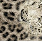 100%Polyester de Afgedrukte Stof van het Af:drukken van de luipaard Pigment&Disperse voor de Reeks van het Beddegoed