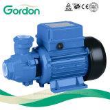 Pompe à eau périphérique de turbine en laiton électrique domestique avec l'ajustage de précision de pipe