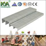 Bea lle graffette di 80 serie per carpenteria e Furnituring