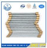 Corda rivestita galvanizzata 1X19 1X7 1X37 del filo di acciaio del filo di acciaio dello zinco del filo del filo di acciaio