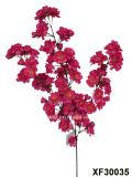 벚꽃 (XF30035)의 인공 플라스틱 또는 실크 꽃 단 하나 줄기