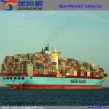 Frete de mar/serviço da logística de China a India