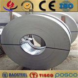 bande de l'acier inoxydable 316/316L avec le prix concurrentiel