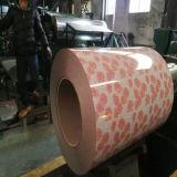 PPGI a enduit la feuille d'une première couche de peinture en bois galvanisée de bobine des graines PPGI de bobine en acier