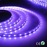 Alta luz de tira del lumen 12V RGB IP65 60LED LED 14.4W