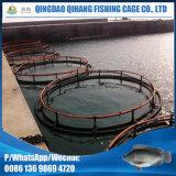 Клетка быть фермером рыб рамки HDPE высокого качества трубчатая сетчатая для быть фермером Tilapia