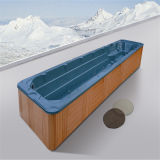 Da piscina acrílica quadrada dos TERMAS de uma nadada de 10 medidores cuba quente