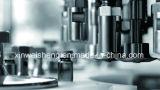Xgib-60 variable Frequecncy Schutzkappe-Schraubende Hochgeschwindigkeitsmaschine