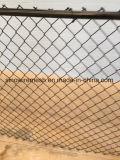 Rete fissa galvanizzata PVC& di Sailin Chainlink
