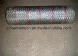 Galvano galvanisierte sechseckige Maschendraht-Filetarbeit mit Qualität (CER und SGS)