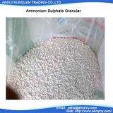 """粒状N 21%のアンモニウムの硫酸塩または粉「肥料""""の高いConent"""