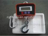 Échelle s'arrêtante électronique de poids de l'échelle 500kg de grue de Digitals